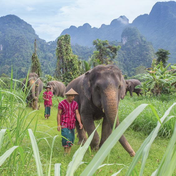 Thailand – The Land of Smiles