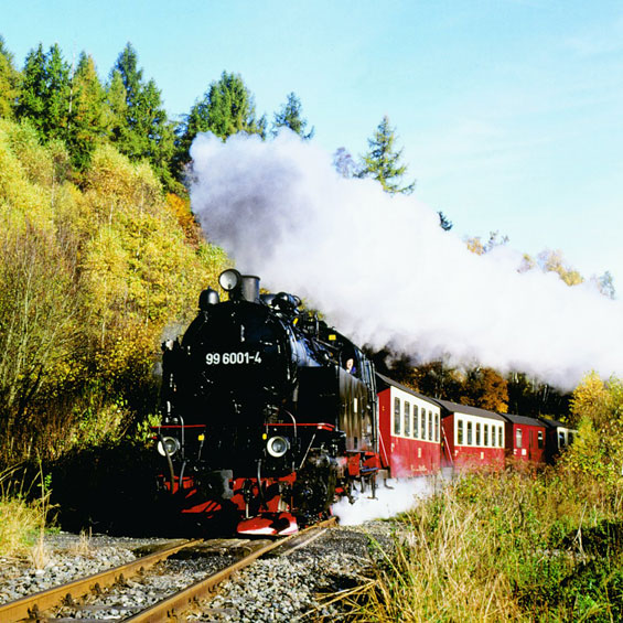 Harz Mountains & Rhine Gorge